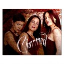 Charmed - 110 Piece Jigsaw Puzzle