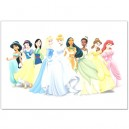 Disney princess - Pillow Case