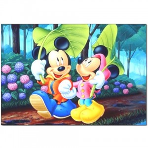 http://www.starsonstuff.com/1861-2288-thickbox/disney-mickey-and-minnie-mouse-pillow-case.jpg