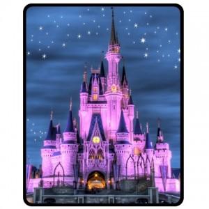 http://www.starsonstuff.com/2056-2482-thickbox/walt-disney-world-cinderella-castle-medium-throw-fleece-blanket.jpg