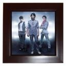 The Jonas Brothers - Framed Tile