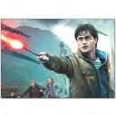 Harry Potter - Pillow Case