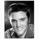 Elvis Presley 11x14 - Canvas Print