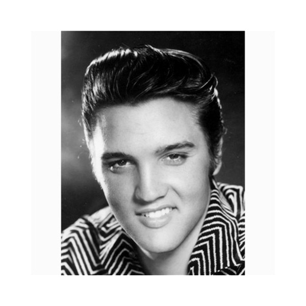 Elvis Presley 18x24 - Canvas Print