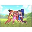 Disney Tinkerbell - Pillow Case